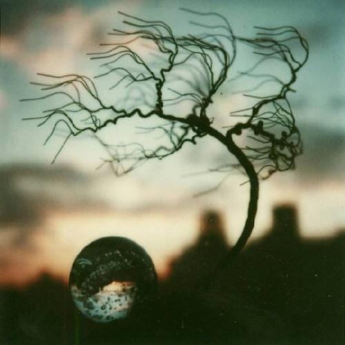 Andre Kertesz (polaroid)