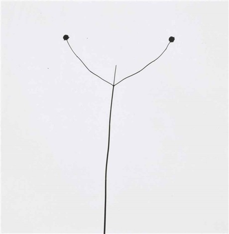 Harry Callahan : Weed against sky