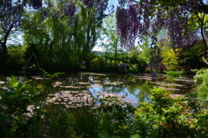 nymphéas jardin de monet - giverny